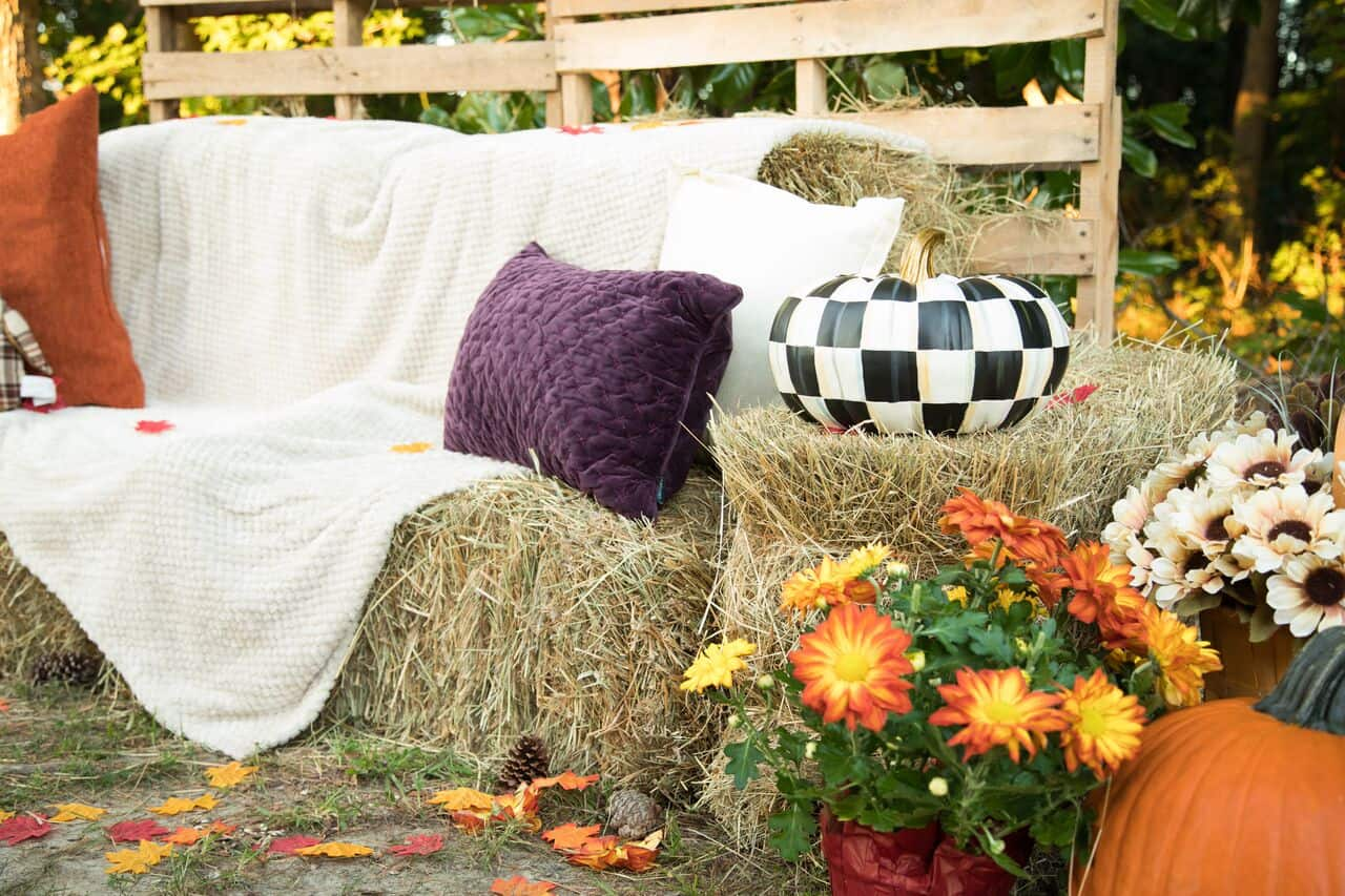 Autumn Photography Set Up & Props