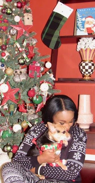 Apres Ski Cozy Christmas Tree Decor Ideas & Inspiration