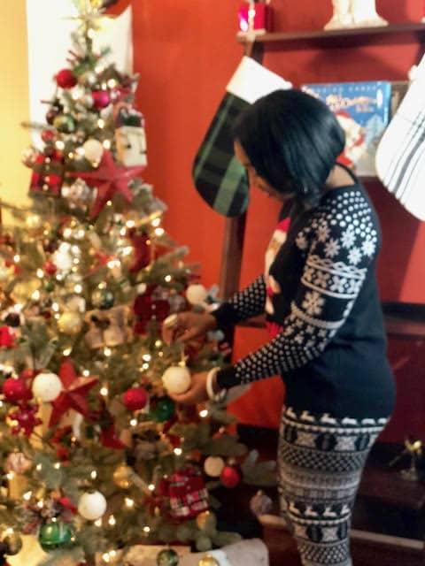 Apres Ski Christmas Tree Decorations