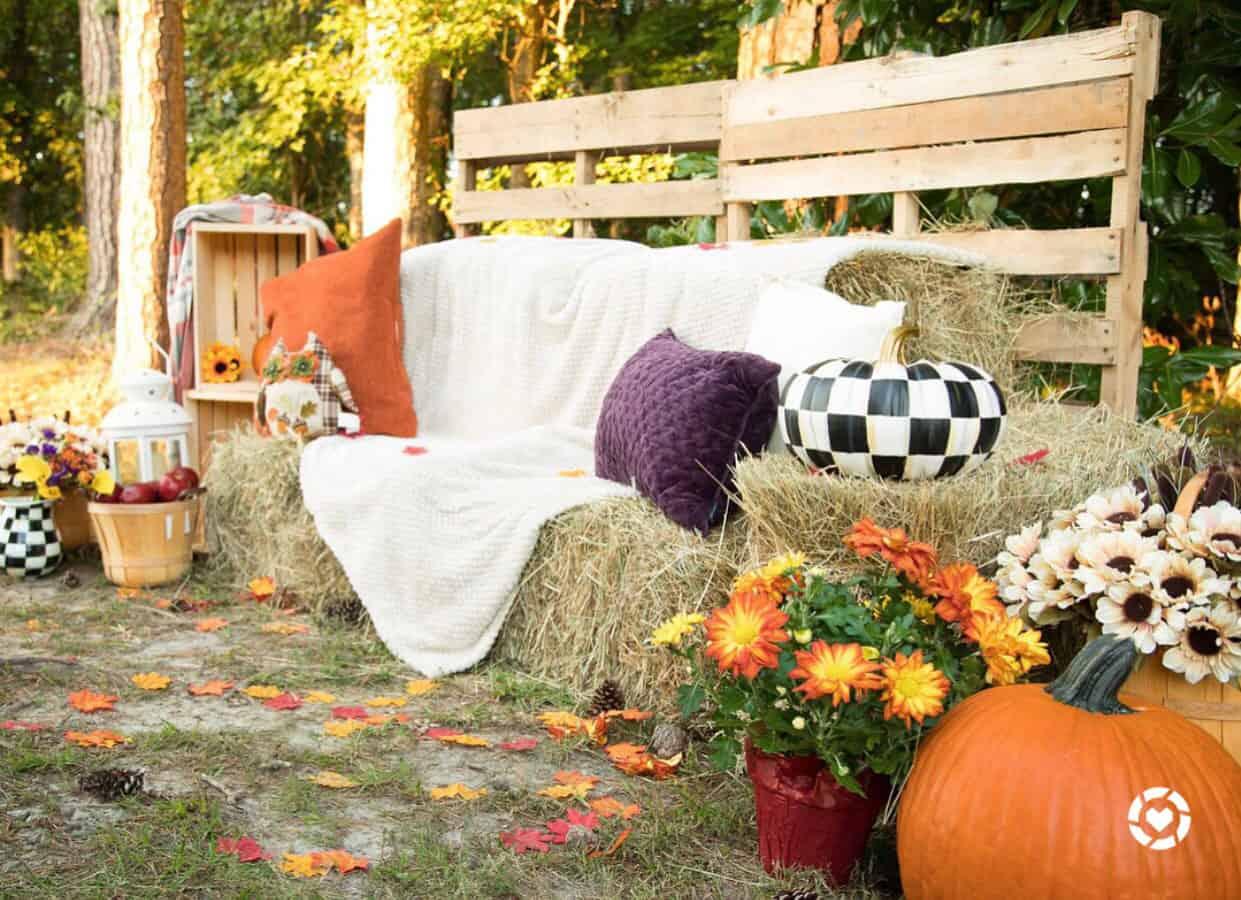 Shaunda Necole x The Studio Hampton Roads autumn photo shoot