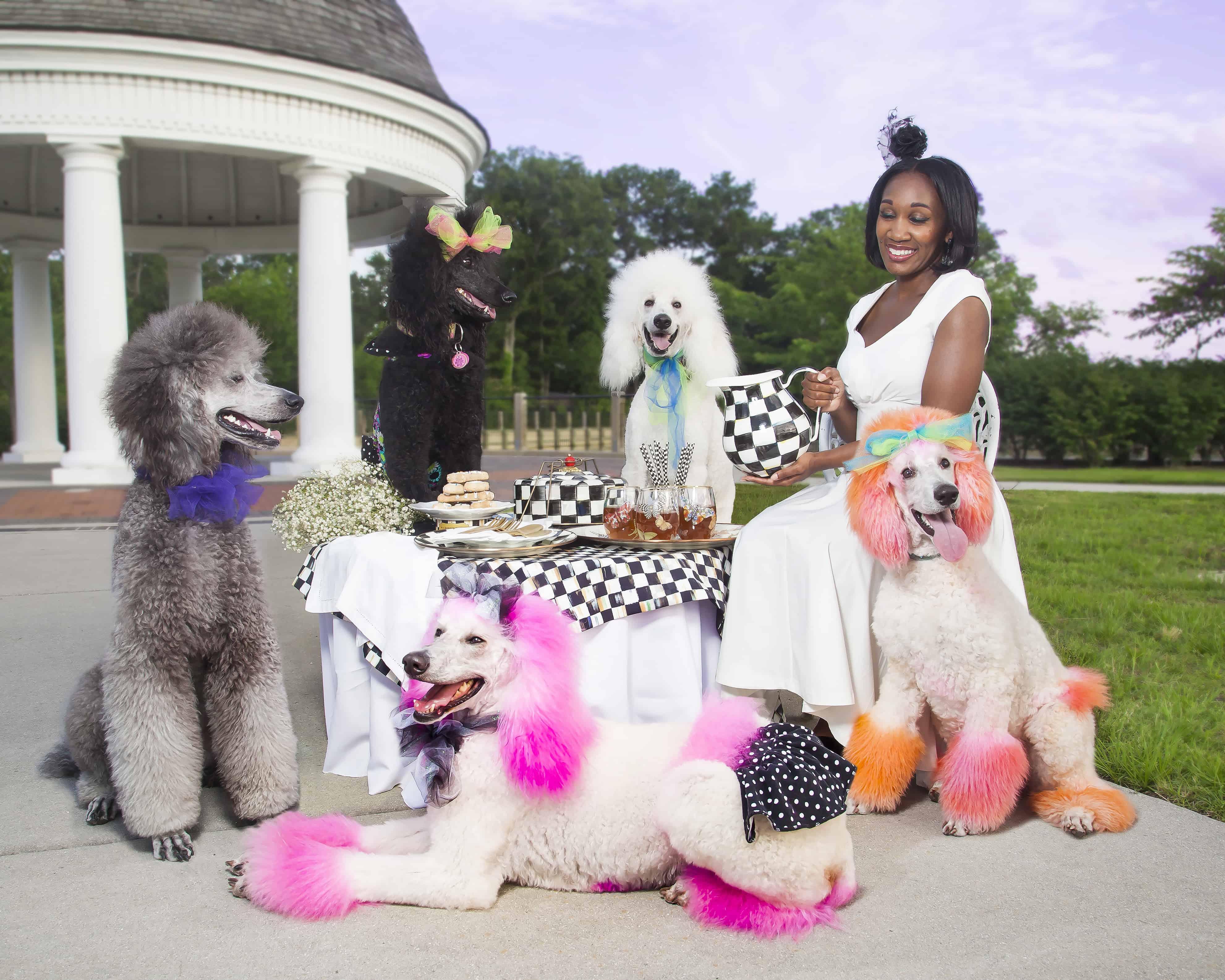 shaunda necole poodle party