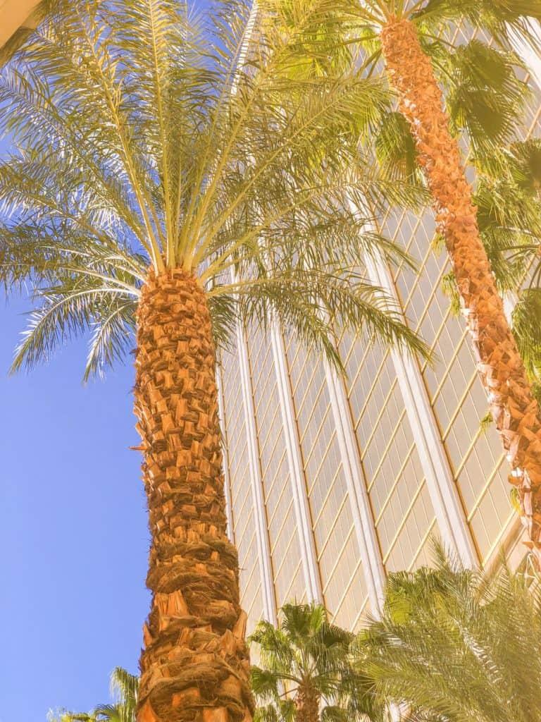 ShaundaNecole.com | Our Stay at Four Seasons Hotel Las Vegas resort