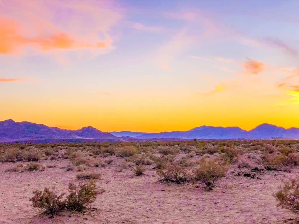 Shaunda Necole Las Vegas Desert Skies