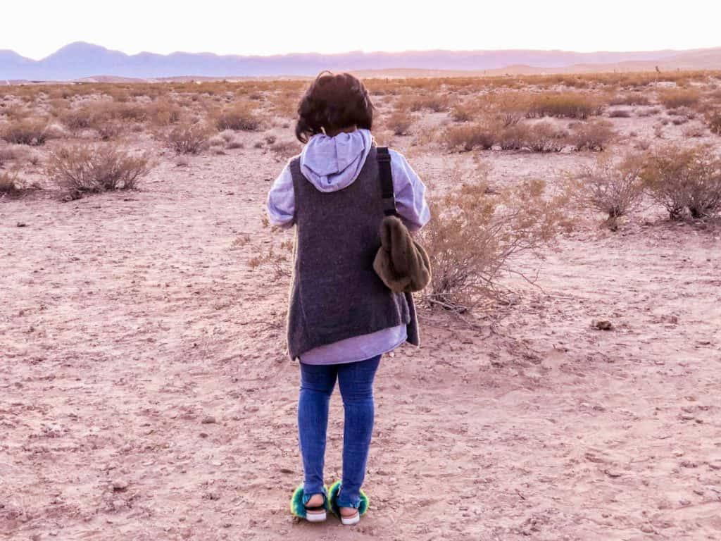 Shaunda Necole Good American Jeans Desert Style