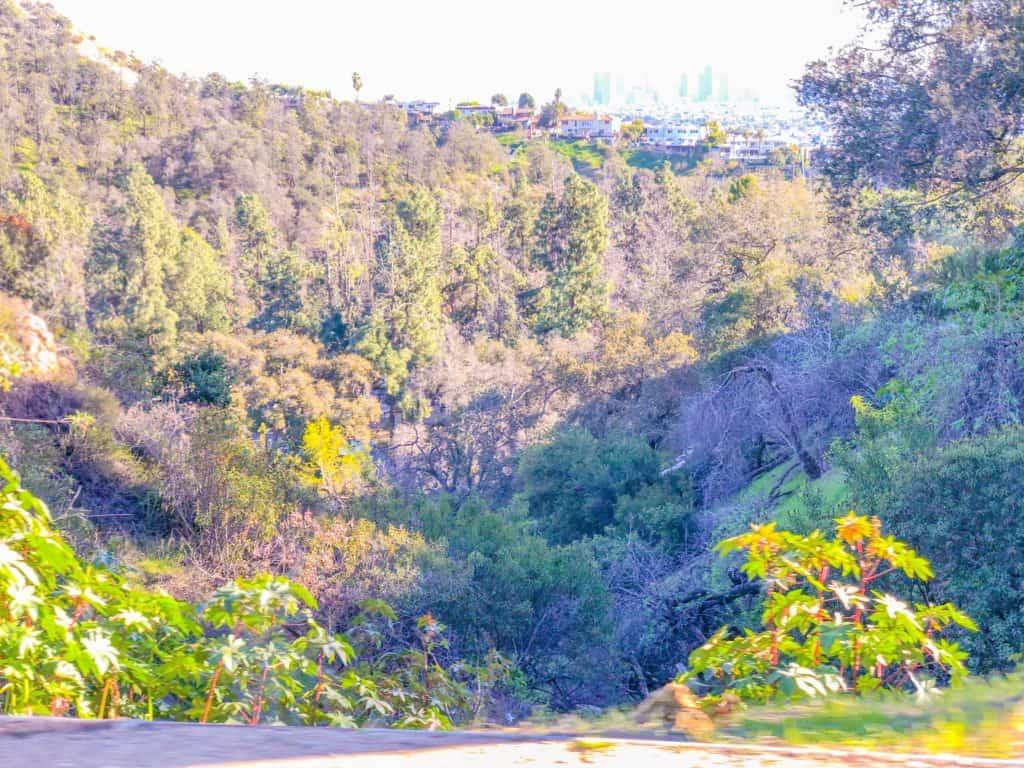 Los Angeles City House on Hills- ShaundaNecole.com