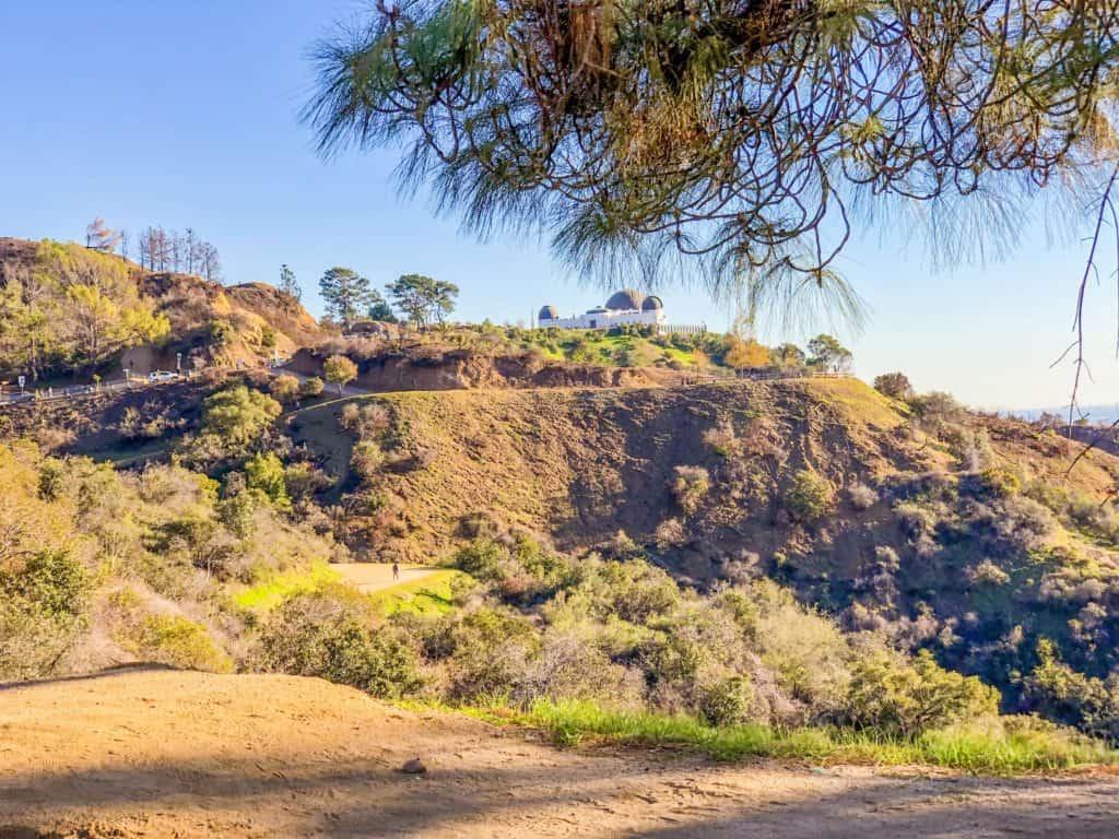 Los Angeles City Griffith Park Trails- ShaundaNecole.com