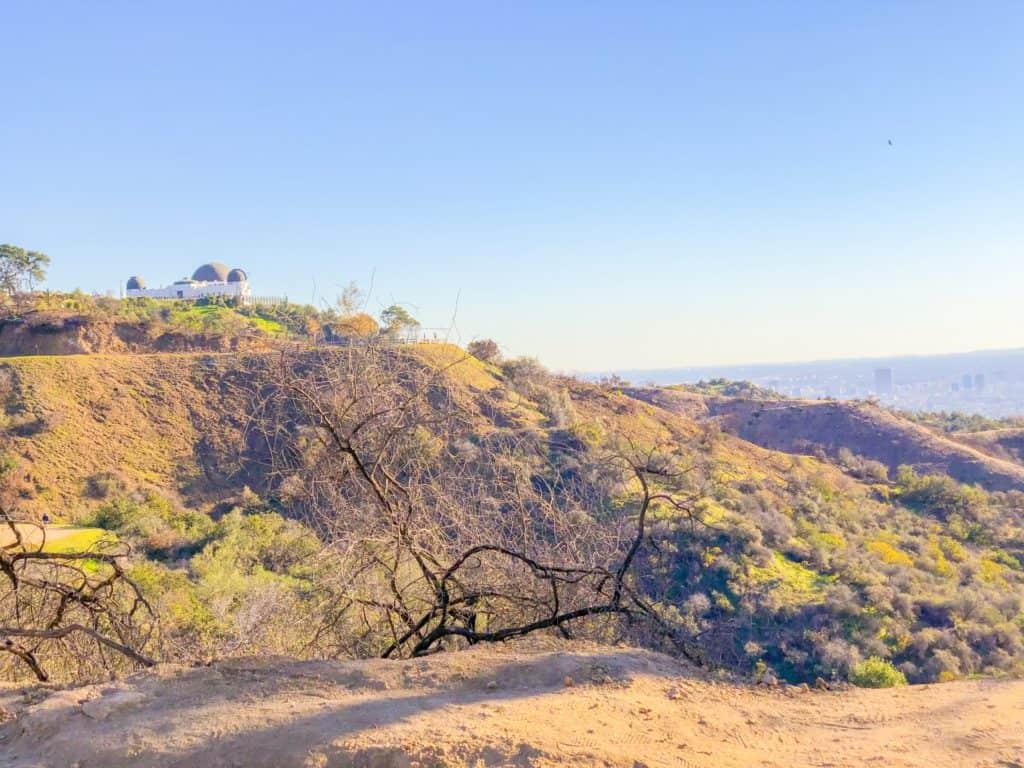 Los Angeles City Griffith Park Views- ShaundaNecole.com