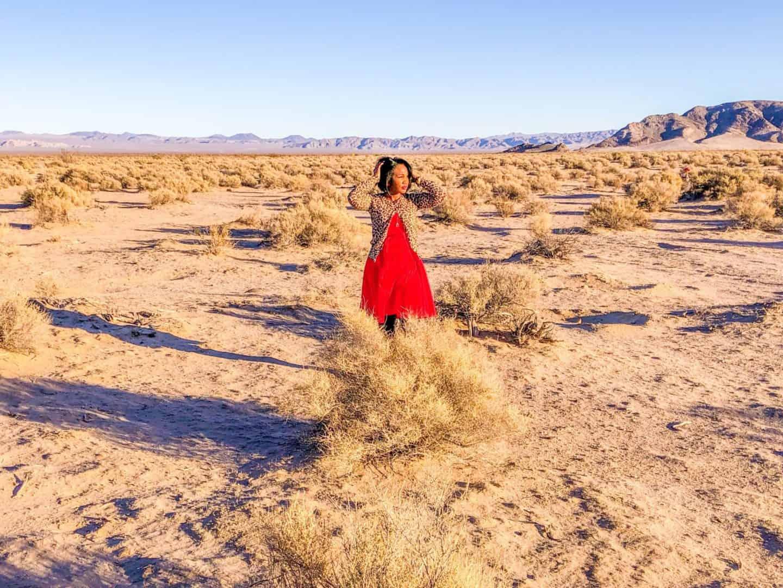 Shaunda Necole Desert Love: Mojave Desert somewhere around San Bernardino, CA