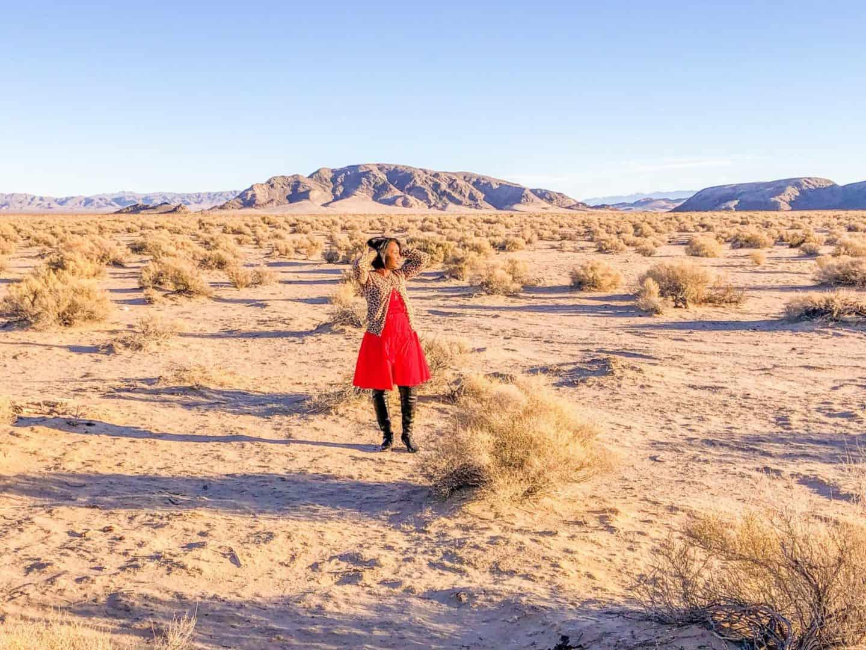 Shaunda Necole Desert Love: Mojave Desert near Nevada
