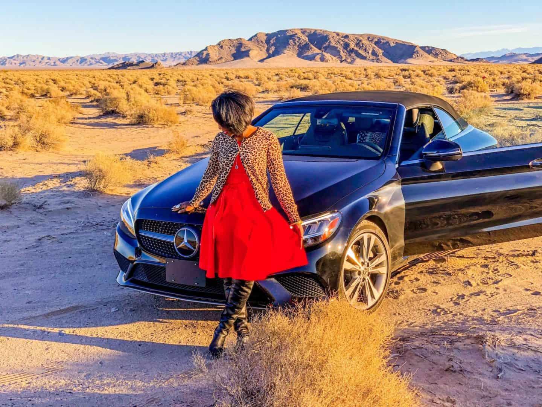 Shaunda Necole Desert Love: Mojave Desert drive