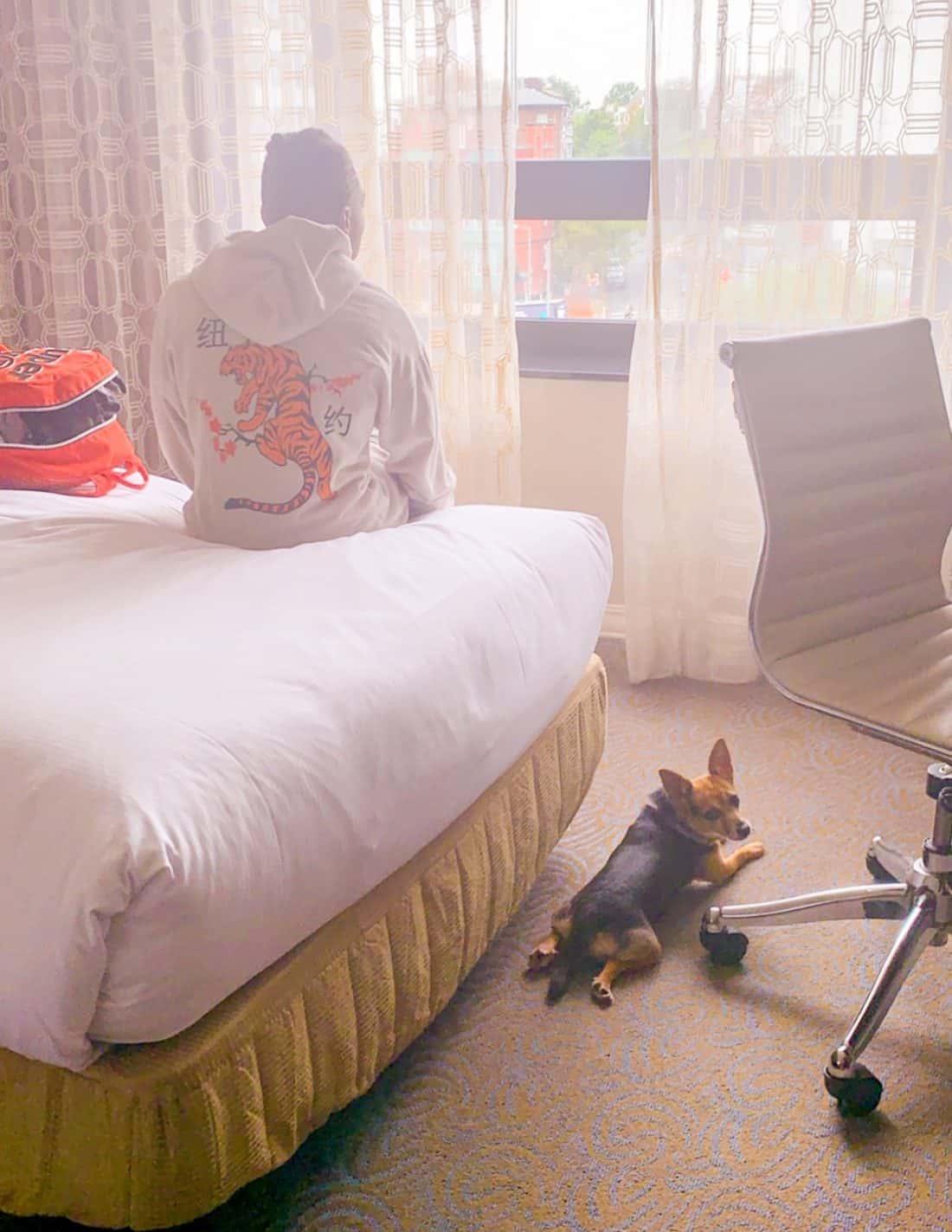 Shaunda Necole- Washington Hilton Hotel pet friendly