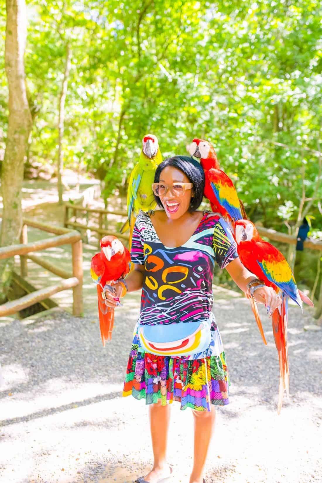 Shaunda Necole- Gumbalimba Park Parakeets, Honduras