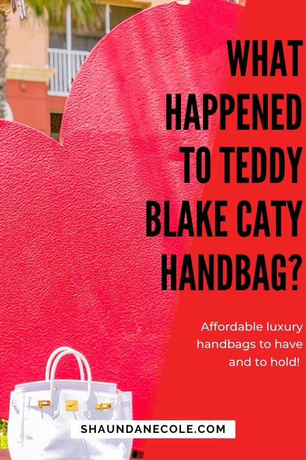 What Happened To Teddy Blake Caty Handbag | Shaunda Necole