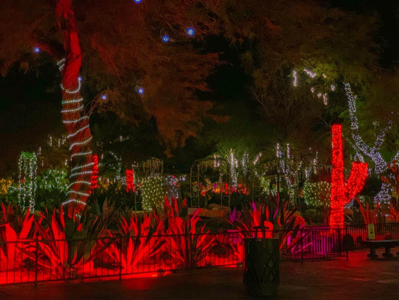 Las Vegas Holiday Cactus Garden - Free Vegas Holiday Festivities To Enjoy