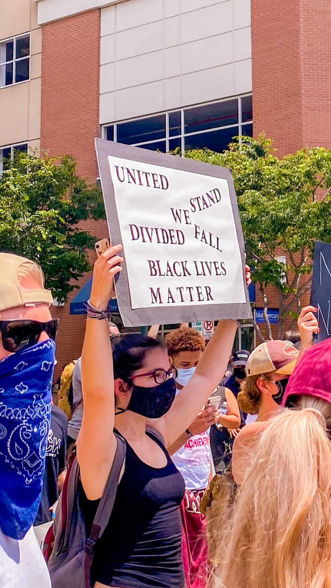 united we stand divided we fall protest sign
