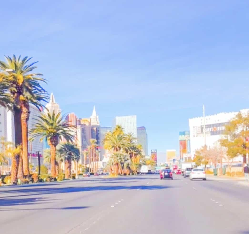 Las Vegas Blvd On The Strip