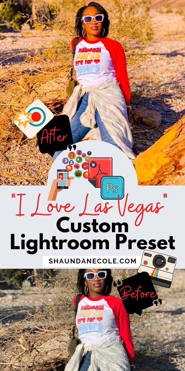 Las Vegas Blogger Presets