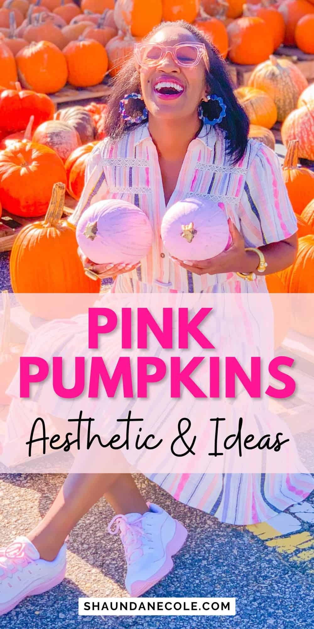Pink Pumpkins Ideas & Aesthetic