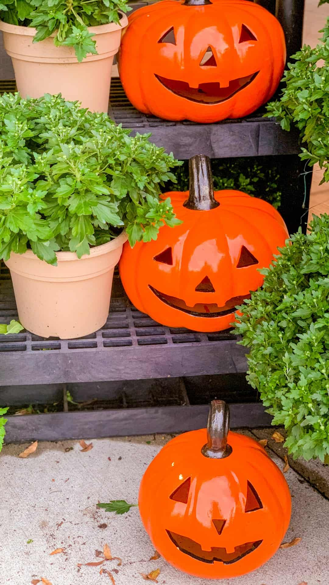 Autumn Wallpaper iPhone Aesthetic Pumpkin Jack-o-lanterns