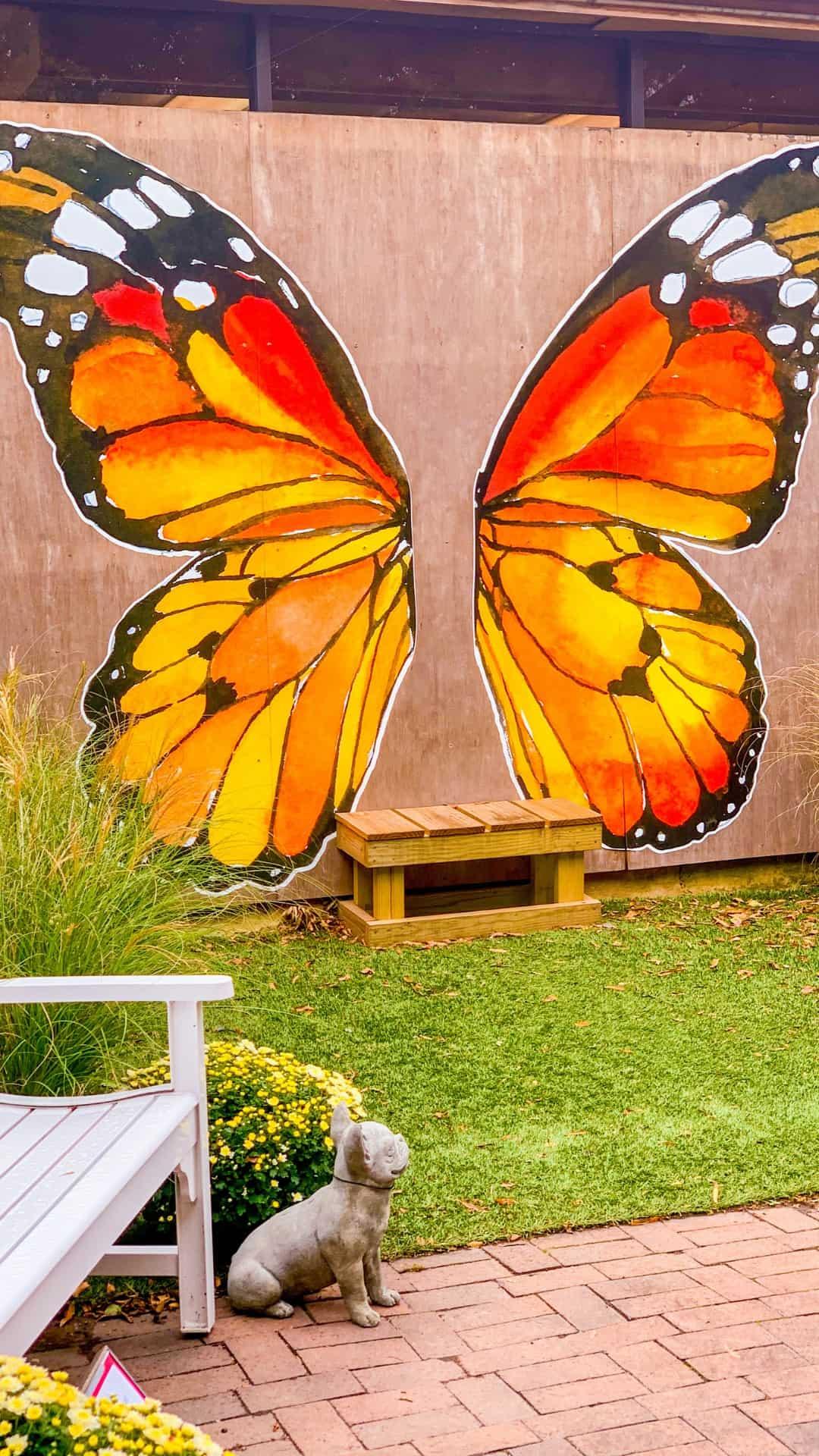 Autumn Wallpaper iPhone Aesthetic Orange Butterfly Mural