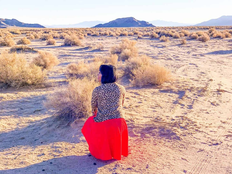 Las Vegas Day Trip Discover Mojave Desert