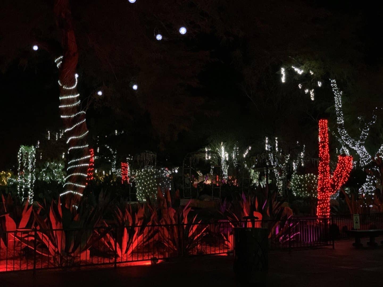 Ethel M Chocolate Factory Largest Cactus Garden