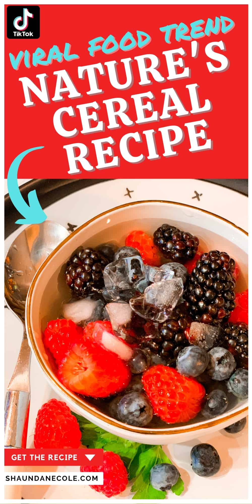 Infographic Picture: Nature's Cereal Recipe- Raspberries, Blueberries & Blackberries In A Bowl Of Coconut Water With Ice & A Spoon. How To Make Nature's Cereal Recipe The TikTok Viral Food Trend Video
