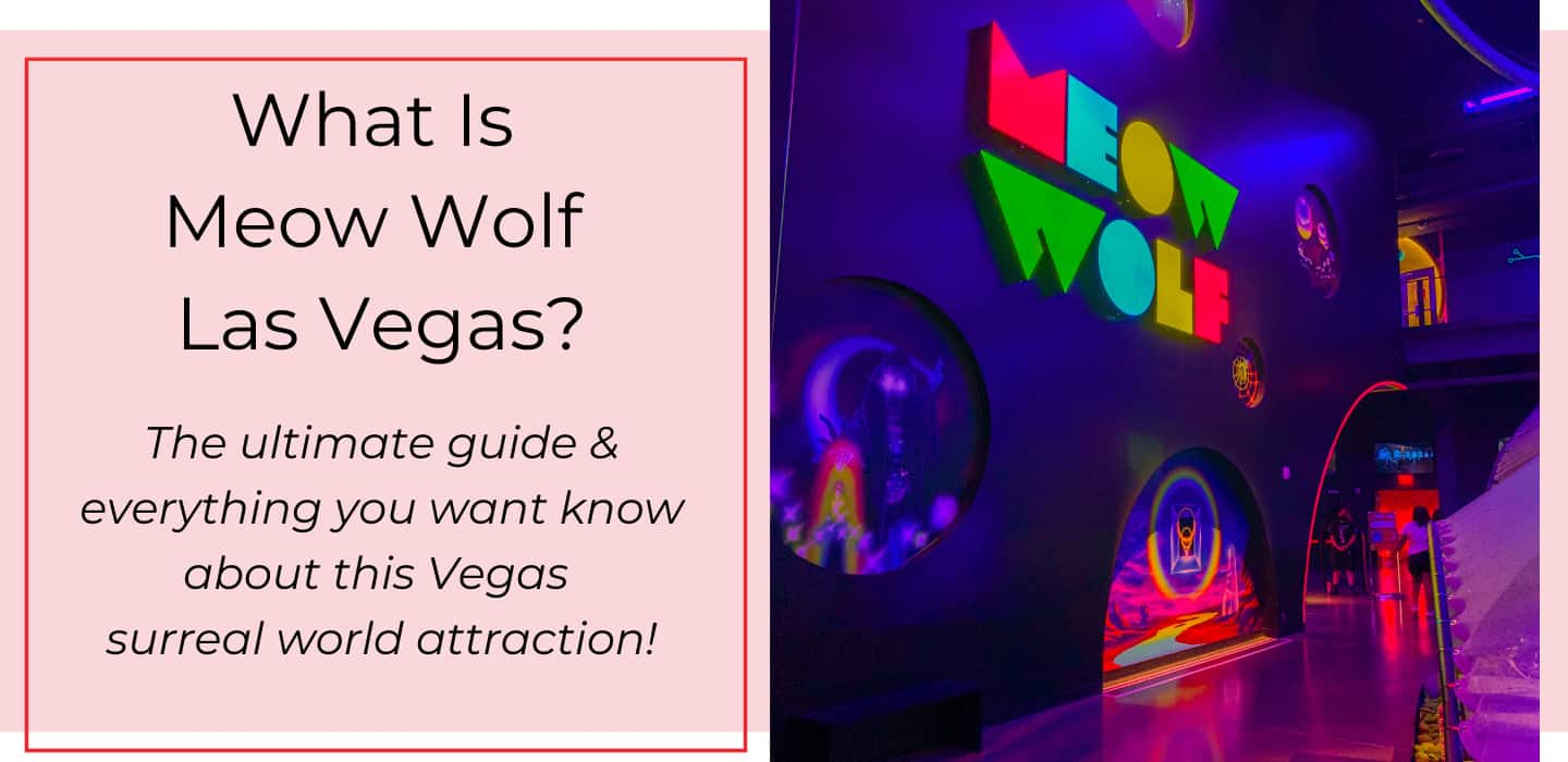 What Is Meow Wolf Las Vegas? What's Exactly Going On At Omega Mart?