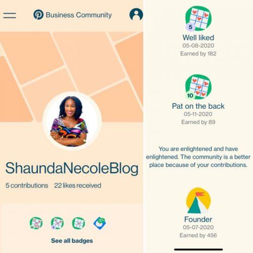 Pinterest Business Community Founding Member Badges